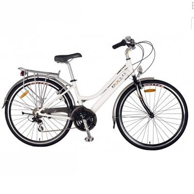upright bike for pregnancy.jpg