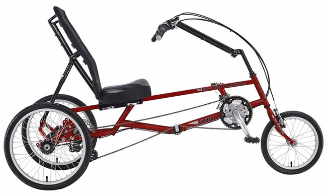 recumbent trike 2 wheels in back.jpg